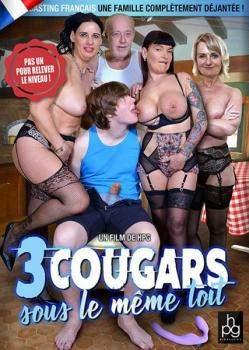 3 cougars sous le meme toit